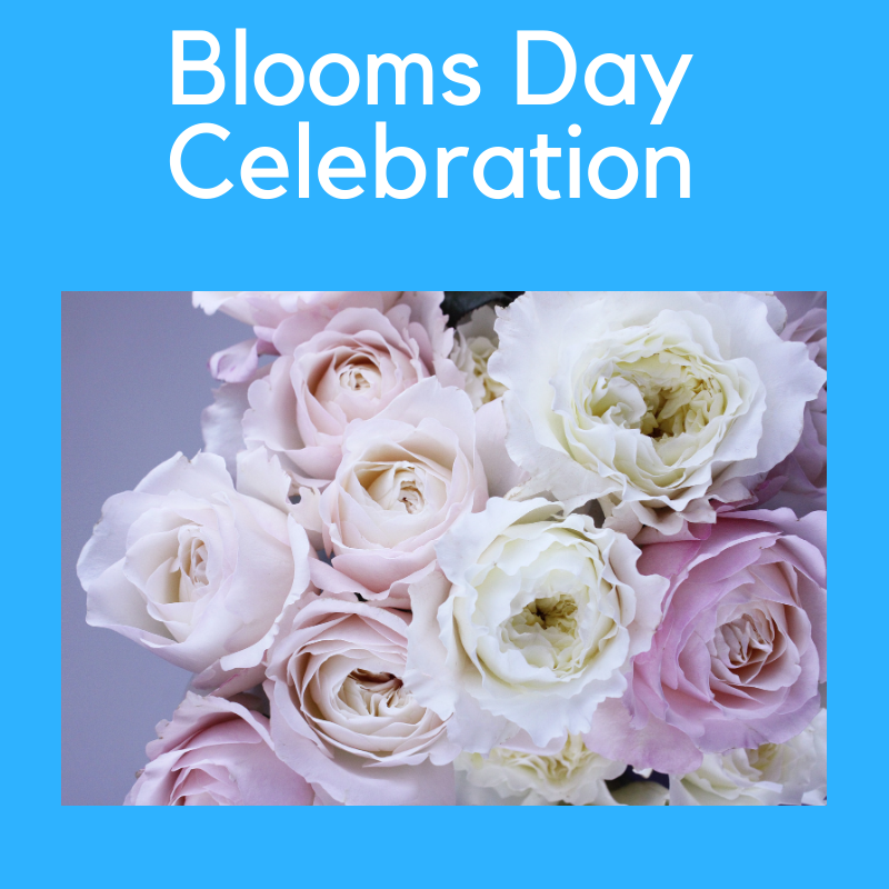 Blooms Day